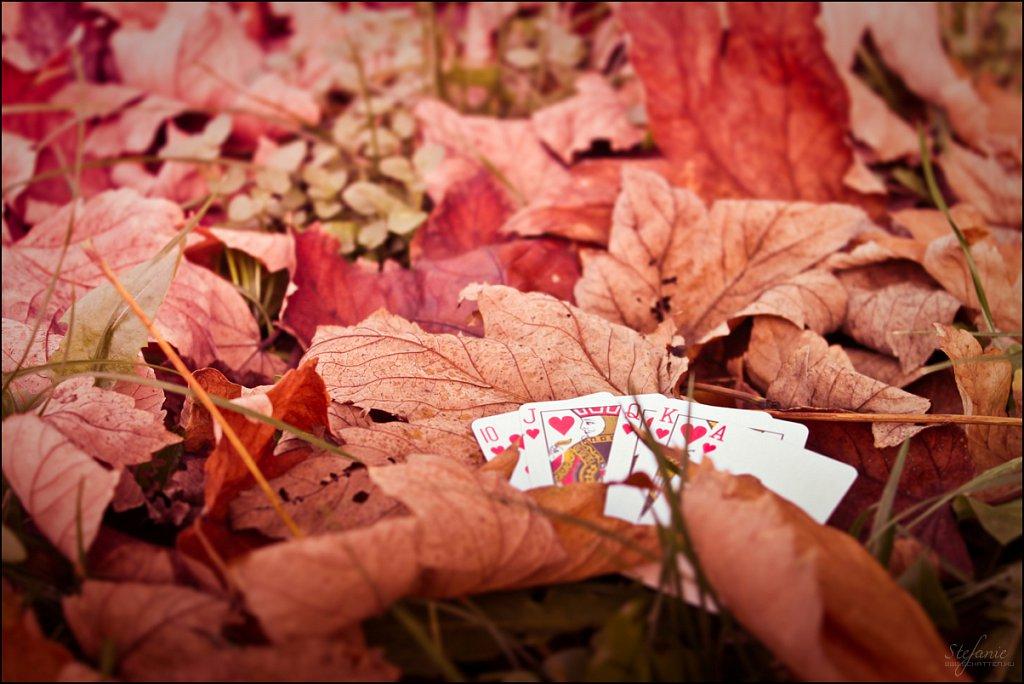 Autumn's game