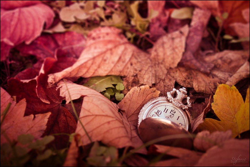 Autumn's time